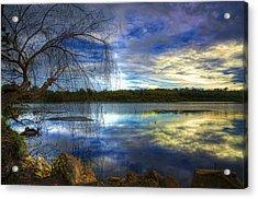 Yanchep Acrylic Print by Imagevixen Photography