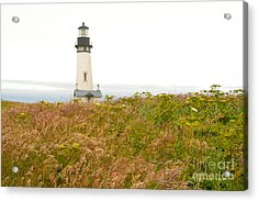 Acrylic Print featuring the photograph Yaquina Head Lighthouse In Oregon by Artist and Photographer Laura Wrede
