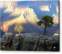 Acrylic Print featuring the photograph Yavapai Point Cliff Hangers by Scott Rackers