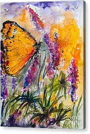 Yellow Butterfly On Lupines Acrylic Print by Ginette Callaway