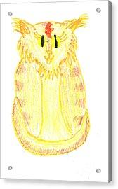 Yellow Cat Acrylic Print by Jeannie Atwater Jordan Allen