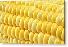 Yellow Corn Macro Acrylic Print by Blink Images
