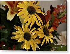 Yellow Daisies Acrylic Print by Richard Gregurich