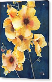 Yellow Flowers Acrylic Print by Ken Powers