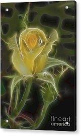 Yellow Fractalius Rose Acrylic Print by Deborah Benoit