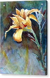 Yellow Iris Acrylic Print by Alan Smith
