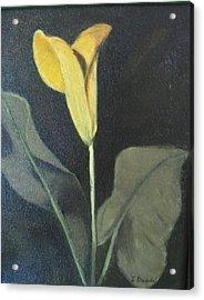 Yellow Lily Acrylic Print by Iris Nazario Dziadul