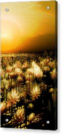 Yellow Acrylic Print by Monroe Snook