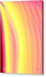 Yellow Neon Acrylic Print by Will Czarnik