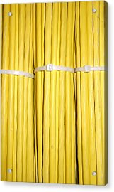 Yellow Network Cables Acrylic Print by Matthias Hauser