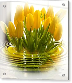 Yellow Tulips Acrylic Print by Trudy Wilkerson