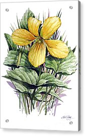 Acrylic Print featuring the painting Yellow Violet by Bob  George