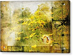 Yellow Wildflower Field Abstract Acrylic Print by Elaine Manley