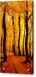 Yellow Wood Acrylic Print by Steve K