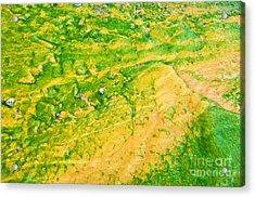 Yellowstone Abstract 1 Acrylic Print by Bob and Nancy Kendrick