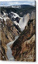 Acrylic Print featuring the photograph Yellowstone Falls by Dan Friend