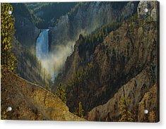 Yellowstone Lower Falls Acrylic Print by Johan Elzenga