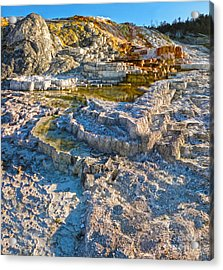 Yellowstone National Park - Mammoth Hot Springs - 02 Acrylic Print by Gregory Dyer