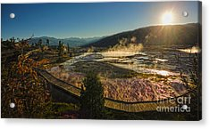 Yellowstone National Park - Minerva Terrace - 05 Acrylic Print by Gregory Dyer