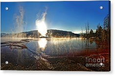 Yellowstone National Park - Minerva Terrace - 06 Acrylic Print by Gregory Dyer