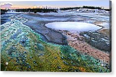 Yellowstone Norris Geyser Basin At Sunset - 04 Acrylic Print by Gregory Dyer