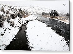 Yellowstone Park Wyoming Winter Snow Soda Butte Creek Acrylic Print by Mark Duffy
