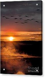 Yellowstone Sunrise Acrylic Print by Eli Horowitz
