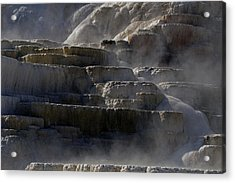 Acrylic Print featuring the photograph Yellowstone Texture by J L Woody Wooden