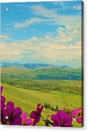 Yellowstone Valley Acrylic Print by Virginia Lei Jimenez