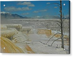 Yellowstone's Canary Springs Acrylic Print by Bruce Gourley