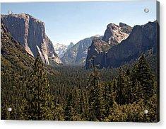 Yosemite Acrylic Print by Tina Karle