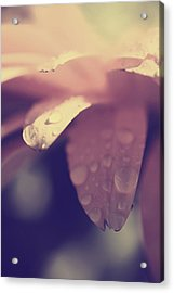 You Left Me Crying Acrylic Print by Laurie Search