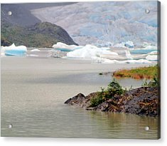 You Won't Believe Mendenhall Glacier Acrylic Print by Mindy Newman