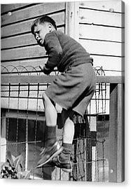 Young Boy Climbing Fence Acrylic Print by George Marks