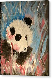 Young Panda Acrylic Print by Hannah Stedman