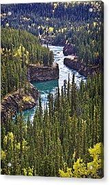 Yukon Territory, Canada Acrylic Print by Richard Wear
