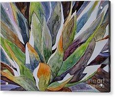 Yupo - Agave Acrylic Print