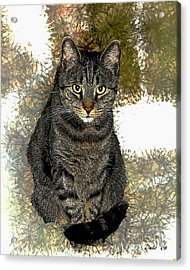 Acrylic Print featuring the digital art Zachary by Dale   Ford