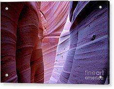 Zebra Canyon Acrylic Print by Keith Kapple