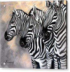 Zebra Crossing Acrylic Print by Rae Andrews