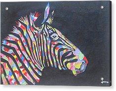 Zebra Acrylic Print by Rejeena Niaz