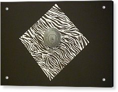 Zebra Square Acrylic Print by Douglas Fromm