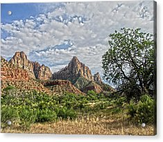Acrylic Print featuring the photograph Zion National Park by Anne Rodkin