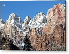 Zion Towers Acrylic Print by Bob and Nancy Kendrick