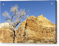 Acrylic Print featuring the photograph Zion Winter Sky by Bob and Nancy Kendrick