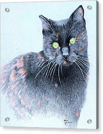 Zoe  Neighborhood Character Acrylic Print by Ann Hamilton