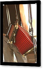 Zydeco Red Accordian Acrylic Print by Margie Avellino