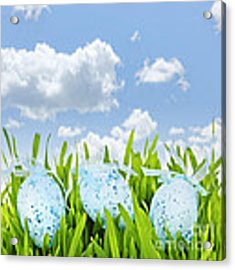 Easter Eggs In Green Grass Acrylic Print by Elena Elisseeva