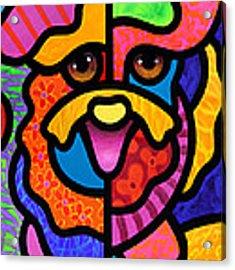 Happy Dog Acrylic Print by Steven Scott