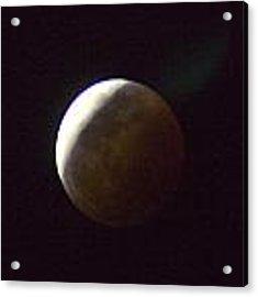 Luna Eclipse Acrylic Print by Debbie Cundy